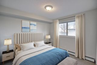 Photo 14: 4306 4975 130 Avenue SE in Calgary: McKenzie Towne Apartment for sale : MLS®# A1082092