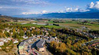 Photo 1: 35843 TIMBERLANE Drive: House for sale in Abbotsford: MLS®# R2531006