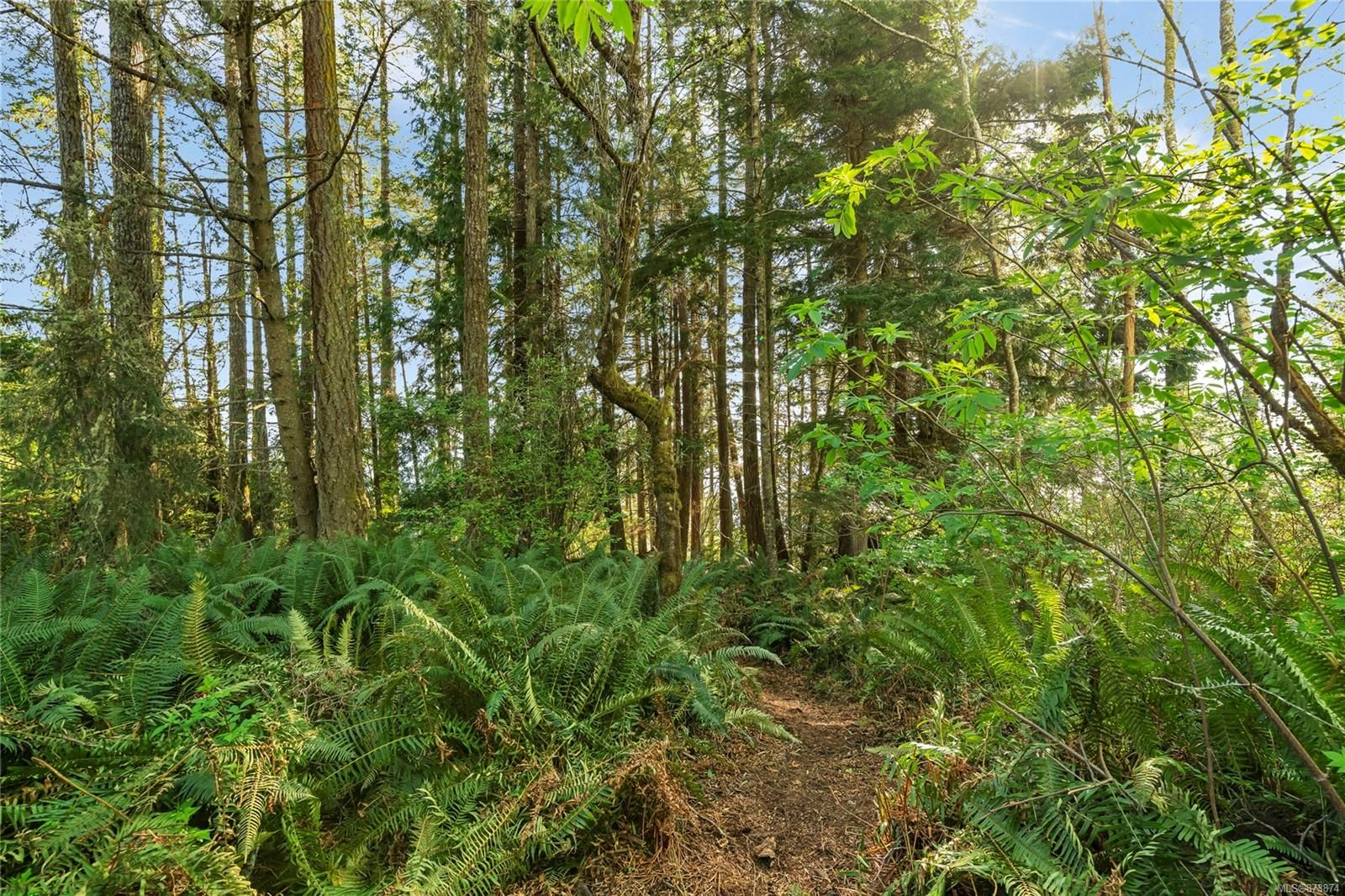 Main Photo: 2550 Seaside Dr in : Sk French Beach Land for sale (Sooke)  : MLS®# 873874