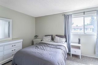 Photo 21: 130 Pennsylvania Road SE in Calgary: Penbrooke Meadows Row/Townhouse for sale : MLS®# A1136536