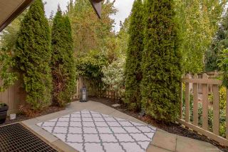 """Photo 19: 64 20350 68 Avenue in Langley: Willoughby Heights Townhouse for sale in """"SUNRIDGE"""" : MLS®# R2109744"""