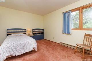 Photo 21: 4221 Glendenning Rd in VICTORIA: SE Blenkinsop House for sale (Saanich East)  : MLS®# 821064