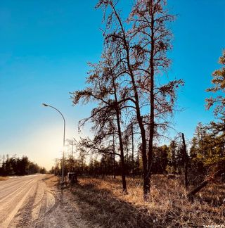 Photo 5: Over one acre lots in Hudson Bay: Lot/Land for sale : MLS®# SK850480