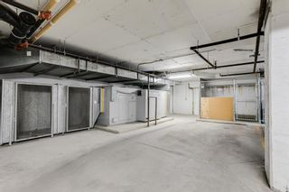 Photo 31: 2244 48 Inverness Gate SE in Calgary: McKenzie Towne Apartment for sale : MLS®# A1130211
