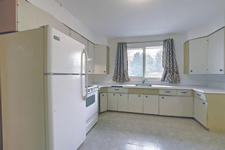 Photo 14: 1936 Matheson Drive NE in Calgary: Mayland Heights Detached for sale : MLS®# A1130969