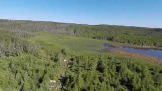 Photo 13: Lot 03-1A Highway 7 in Marie Joseph: 303-Guysborough County Vacant Land for sale (Highland Region)  : MLS®# 201917799