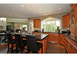 Photo 8: 15808 SOMERSET PL in Surrey: Morgan Creek House for sale (South Surrey White Rock)  : MLS®# F1440495