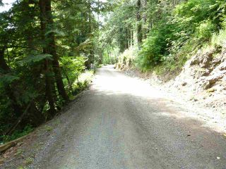 Photo 9: 47165 YALE Road in Chilliwack: Chilliwack E Young-Yale Land for sale : MLS®# R2459551