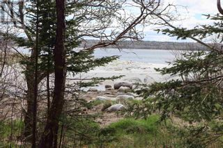 Photo 5: Lot St Catherines River Road in Port Joli: Vacant Land for sale : MLS®# 202111302