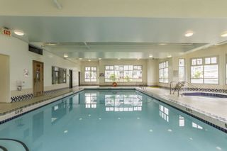 Photo 11: 212 3122 ST JOHNS STREET in Port Moody: Port Moody Centre Condo for sale : MLS®# R2270692