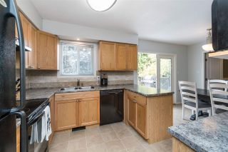 Photo 12: 26993 26 Avenue in Langley: Aldergrove Langley House for sale : MLS®# R2474952