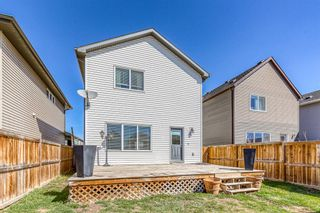 Photo 27: 454 COPPERPOND Boulevard SE in Calgary: Copperfield Detached for sale : MLS®# A1097323