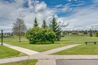 Photo 32: 2310 3115 51 Street SW in Calgary: Glenbrook Apartment for sale : MLS®# A1014586
