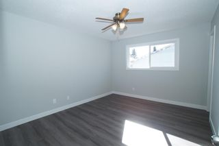 Photo 21: 367 Pinewind Road NE in Calgary: Pineridge Detached for sale : MLS®# A1094790