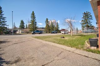 Photo 8: 7724 46 Avenue NW in Calgary: Bowness Detached for sale : MLS®# A1098212