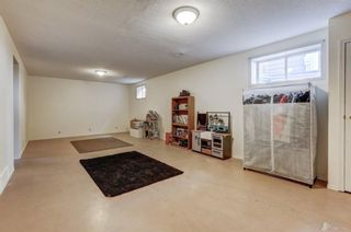 Photo 23: 55 Thornbird Way SE: Airdrie Detached for sale : MLS®# A1114077