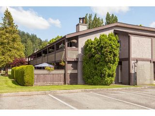 "Photo 39: 513 34909 OLD YALE Road in Abbotsford: Abbotsford East Condo for sale in ""The Gardens"" : MLS®# R2486024"
