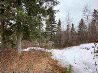 "Photo 5: 5400 PARK Drive in Prince George: Parkridge Land for sale in ""Parkridge"" (PG City South (Zone 74))  : MLS®# R2562955"