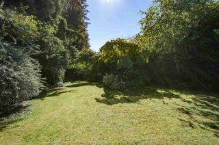 Photo 4: 730 ANDERSON Crescent in West Vancouver: Sentinel Hill House for sale : MLS®# R2110638