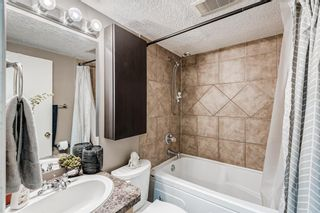 Photo 15: 301 104 24 Avenue SW in Calgary: Mission Apartment for sale : MLS®# A1107682
