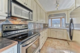Photo 12: 959 Mayland Drive NE in Calgary: Mayland Heights Detached for sale : MLS®# A1147697