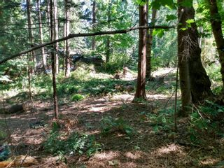 Photo 17: 99 Pirates Lane in : Isl Protection Island Land for sale (Islands)  : MLS®# 882311