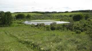 Photo 13: TWP RD 272 & RR 41 in Rural Rocky View County: Rural Rocky View MD Residential Land for sale : MLS®# A1127957
