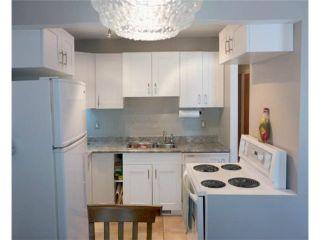 Photo 13: 11 Nolin Avenue in WINNIPEG: Fort Garry / Whyte Ridge / St Norbert Residential for sale (South Winnipeg)  : MLS®# 1215300