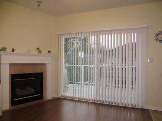 Photo 5: # 15 21579 88B AV in Langley: Walnut Grove Condo for sale : MLS®# F1407894