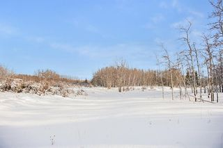 Photo 20: 31 Grove Lane in Rural Rocky View County: Rural Rocky View MD Residential Land for sale : MLS®# A1097684