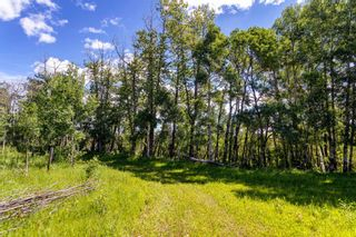 Photo 22: 30457 Rge Rd 44: Rural Mountain View County Detached for sale : MLS®# A1124513