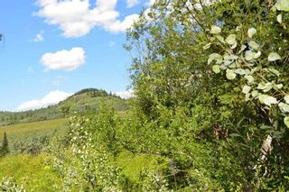 "Photo 21: LOT 1 HISLOP Road in Smithers: Smithers - Rural Land for sale in ""Hislop Road Area"" (Smithers And Area (Zone 54))  : MLS®# R2491414"