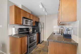 Photo 14: 507 500 Oswego St in : Vi James Bay Condo for sale (Victoria)  : MLS®# 858101