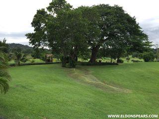 Photo 40: Panama City Condo on the Golf Course