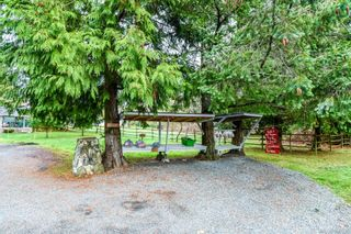 Photo 7: 3152 York Rd in : CR Campbell River South Mixed Use for sale (Campbell River)  : MLS®# 866530