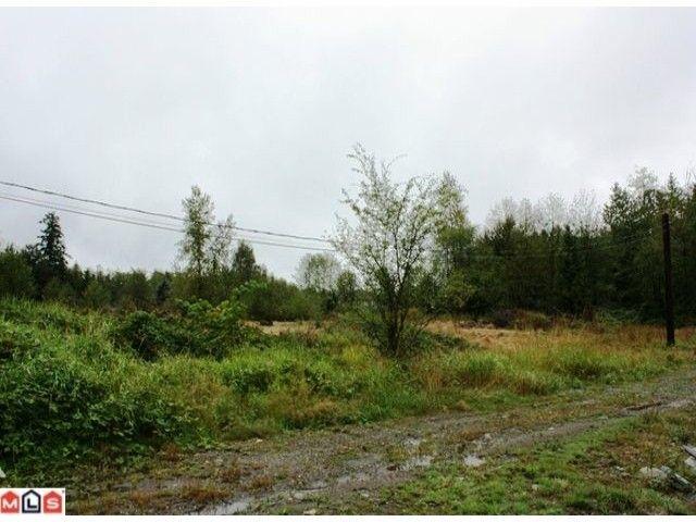 Main Photo: 5683 BAYNES Street in Abbotsford: Bradner Land for sale : MLS®# F1023266
