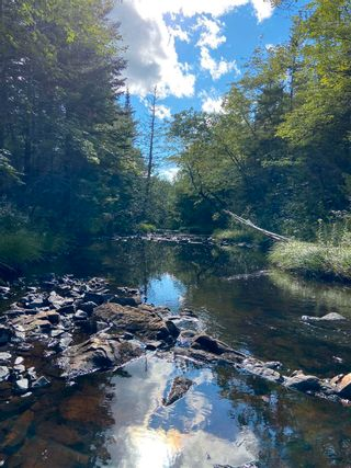 Photo 11: Lot Highway 4 False Bay Brook in River Bourgeois: 305-Richmond County / St. Peters & Area Vacant Land for sale (Highland Region)  : MLS®# 202123291