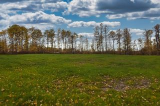 Photo 4: #9 North Pigeon Lake Estates: Rural Wetaskiwin County Rural Land/Vacant Lot for sale : MLS®# E4265016