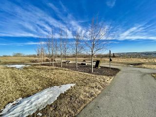 Photo 47: 123 Drake Landing Common: Okotoks Detached for sale : MLS®# A1074912