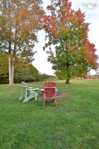 Photo 13: 82 MORGANVILLE Road in Bear River: 401-Digby County Residential for sale (Annapolis Valley)  : MLS®# 202125854