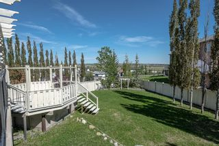 Photo 23: 53 Royal Birch Grove NW in Calgary: Royal Oak Detached for sale : MLS®# A1115762