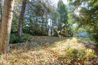 Photo 34: 14165 PARK Drive in Surrey: Bolivar Heights House for sale (North Surrey)  : MLS®# R2516660