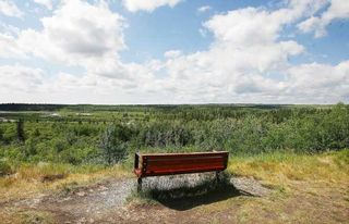 Photo 18: Calgary Condo
