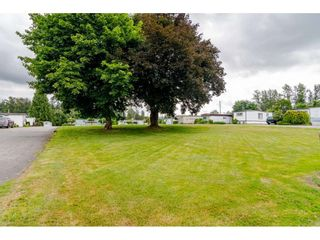 """Photo 25: 3 4426 232 Street in Langley: Salmon River Manufactured Home for sale in """"WESTFIELD COURT"""" : MLS®# R2479123"""