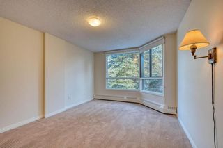 Photo 32: 201 2425 90 Avenue SW in Calgary: Palliser Apartment for sale : MLS®# A1052664