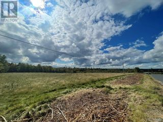 Photo 3: - Board Road in Leverville: Vacant Land for sale : MLS®# NB064229