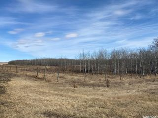 Photo 22: Schulz Acreage in North Battleford: Residential for sale (North Battleford Rm No. 437)  : MLS®# SK842976