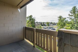 Photo 15: 2308 3115 51 Street SW in Calgary: Glenbrook Apartment for sale : MLS®# A1024636