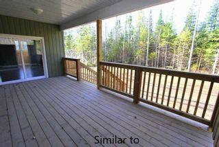 Photo 6: 29 Armitage Avenue in Kawartha Lakes: Rural Eldon House (Bungalow-Raised) for sale : MLS®# X4385316