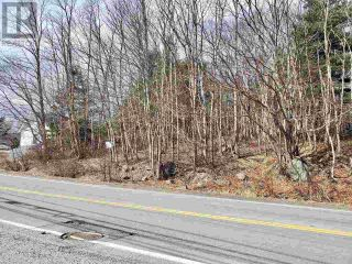 Photo 2: Lot Highway 3 in Sandy Cove: Vacant Land for sale : MLS®# 202004810